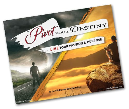 Pivot Your Destiny E-book cover