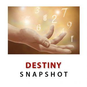 Destiny Snapshot